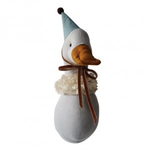 Duck circus pigeon color in turquoise cap
